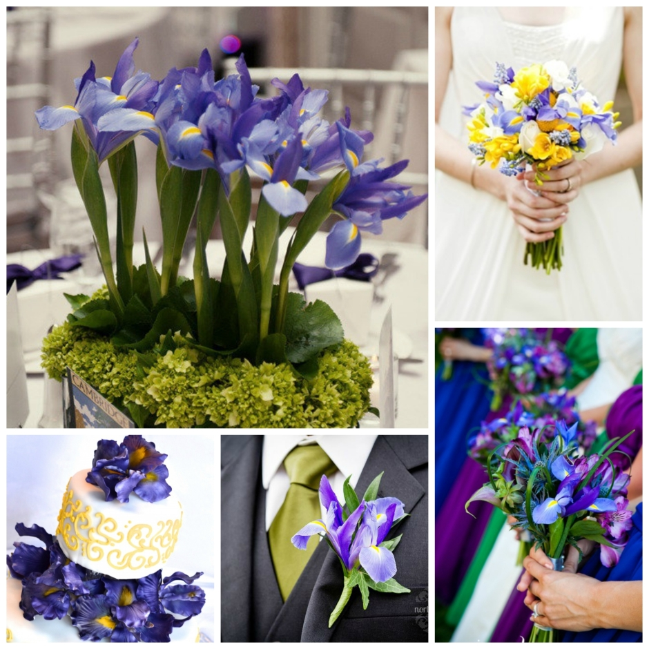 iris wedding flowers