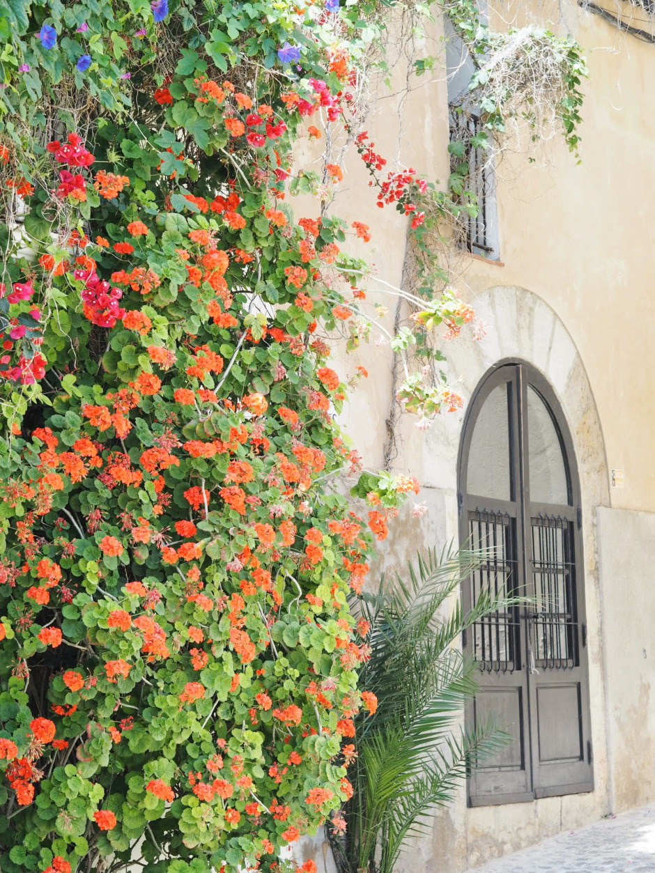 Ibiza Town Street Flower Window